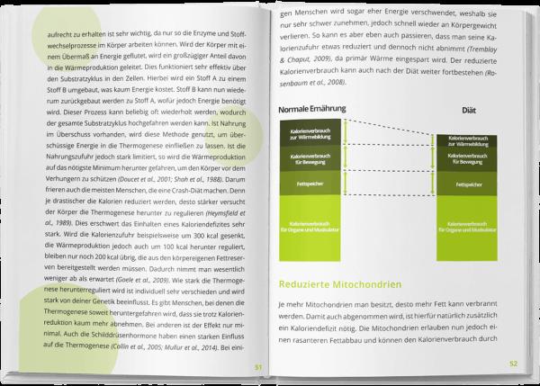 Erfolgreich abnehmen ☆ Das Hungerstoffwechsel Buch von..